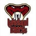 Lakeland D-backs logo